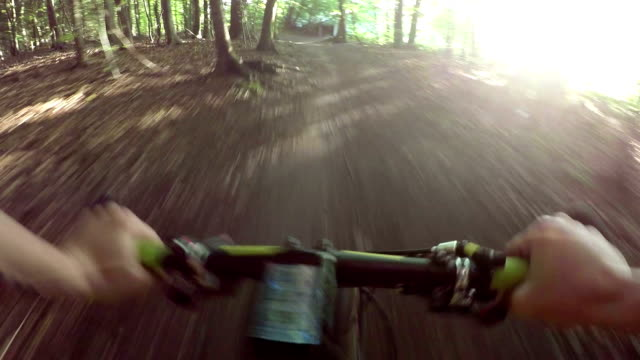MTB - Single Track in the Forest video