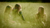 Sisters Throw Grass At Each Other In A Beautiful Sunlit Meadow video