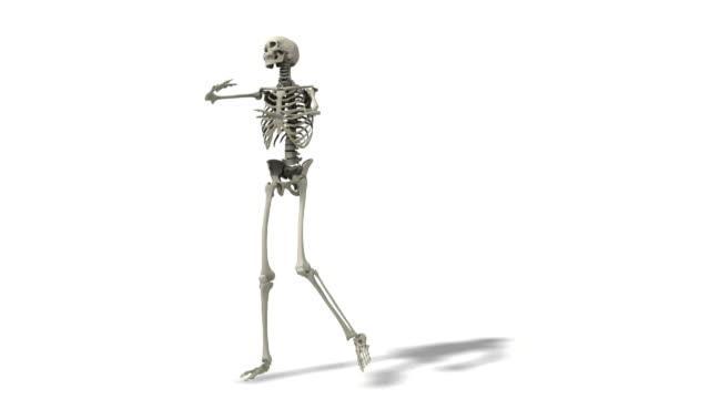 Skeleton dances, the dancing dead video