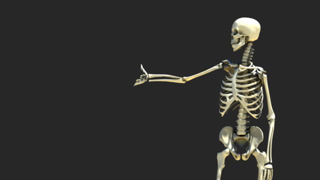 Skeleton Presentation 1 video