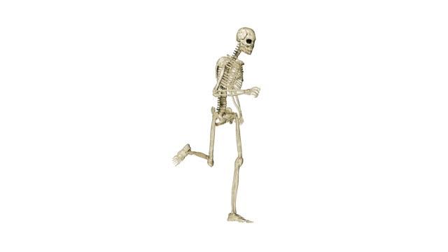 Skeleton running morphing into Human, white video