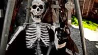 HD: Skeleton video