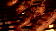 Skewered chicken wings grilling over glowing coals video