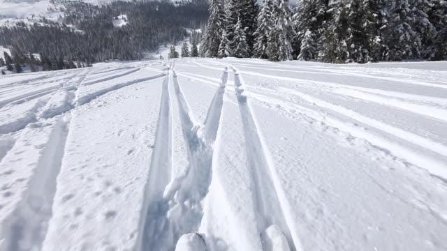 HD: Ski downhill on skis video