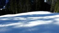 ski in Alps forest POV video