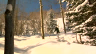Skier and Snowboarder through the trees HD video