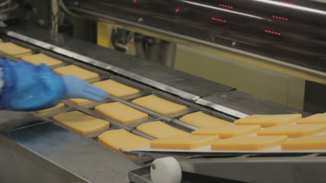 slices of cheese moves on assembly line, closeup video