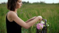 Slim girl in black dress works of flowers at sunset video