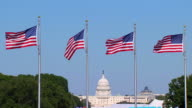 HD SloMo US Capital Flags_3 (720/24P) video