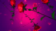 Slow Falling Red Roses (Loopable) video