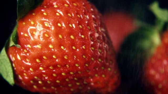 Slow mo. Strawberry berries under fine rain video