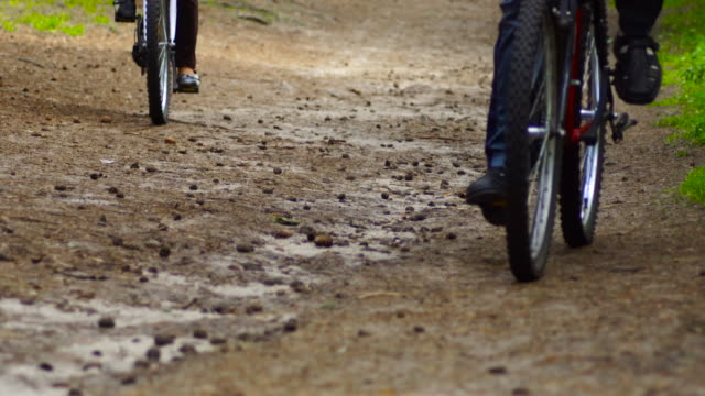 Slow motion: bicycles in the forest video