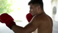 Slow motion. Boxing workout. video