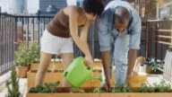 Slow Motion Clip of Urban Gardeners Watering Plants video