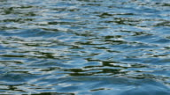 Slow motion close up of lake surface video