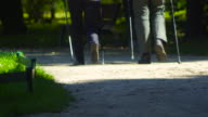 Slow motion: Couple forest Nordic Walking video