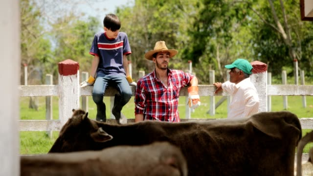 Slow Motion Happy People Farmers Laughing In Family Farm video