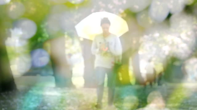 Slow motion HD:woman walking in a park holding an umbrella, blur shot at bokeh video