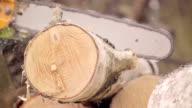 Slow motion: Man cutting wood video