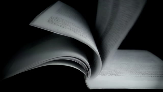 Slow motion of book pages in wind. video