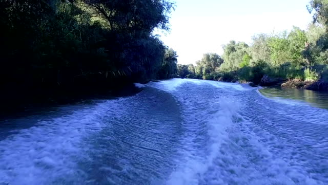 Slow Motion Of Danube Delta video