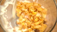 Slow motion of falling corn flakes on wooden background video