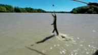 Slow motion of jumping crocodile video