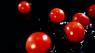 Slow motion of tomatoes falling with water drops on black surface. video