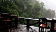 Slow motion, rainy day scene video