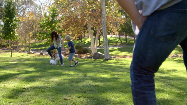 Slow Motion Sequence Of Family Playing Soccer In Park video