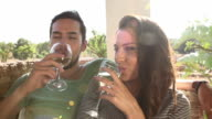 Slow Motion Shot Of Couple Drinking Wine Together video