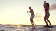 Slow Motion Silhouette Happy Couple Stand Up Paddling Boarding In Ocean video