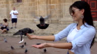 Slow motion video of beautiful tourist feeding the pigeons video