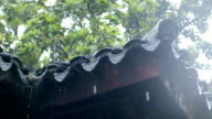 slow motion with rain drops from the china ancient temple eave video