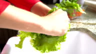 Slow Motion Woman Washing a Vegetable video