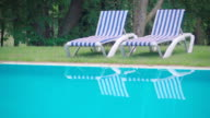 Slow motion:pool scenery and trees video