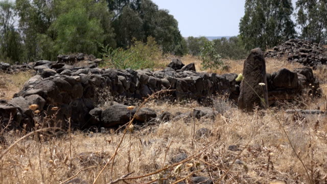 Slow Pan Over Remains of City Wall in Israel video