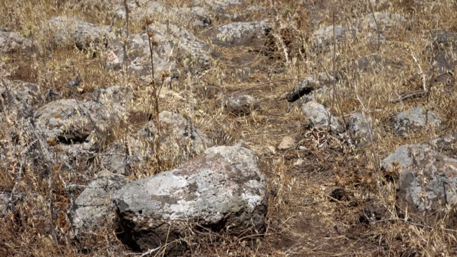Slow Pan Over Rubble from Ancient Roman Road video