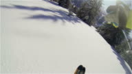 Slow-motion backcountry skiing through pine trees video