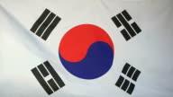 Slowmotion real textile Flag of South Korea video