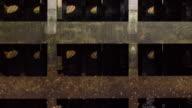 Sluice -4K- video