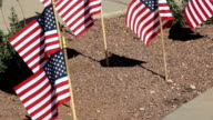 Small American Flags in ground waiving video