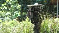 Small backyard European style fountain in a garden video