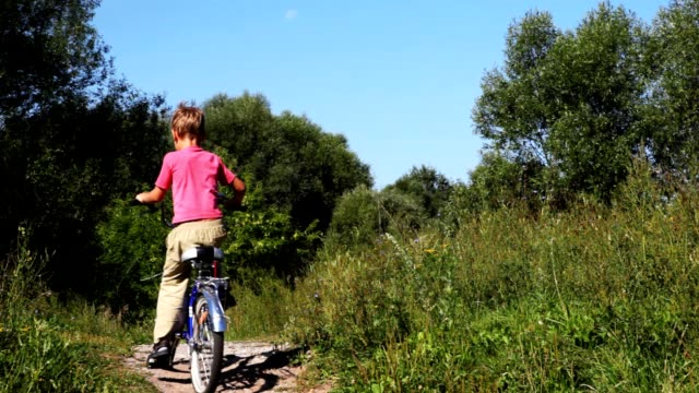 Small boy on bicycle go in park video