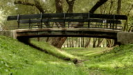 Small bridge in the park. Autumn daytime. Smooth dolly shot. video