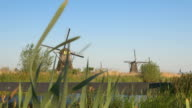 Small bridge leading over water canal to vast field of traditional Dutch mills video