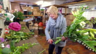 4K: Small business owner florist video