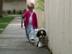 Small Child Walking Dog Towards Camera, Zoom Out video