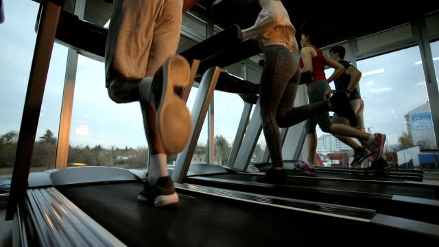 Small group of athletes running on treadmills in a gym. video