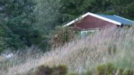 Small Hut In Norwegian Landscape video